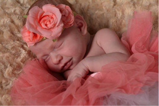 sleeping newborn baby surrounded in pink flower headband is photographed by Andrae Michaels portrait studios