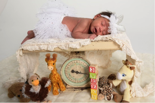 professional photograph of newborn baby sleeping on table by Andrea Michaels portrait studios